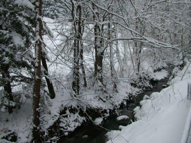 Jezerní potok ve Velkých Karlovicích II