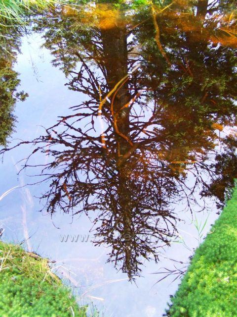 """""""jesenické nebeské zrcátko""""...."""