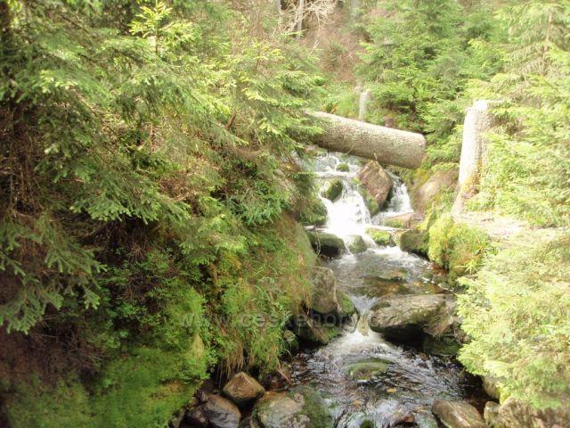 Jezerní potok pod Prášilským jezerem