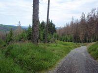 Cesta k Poledníku
