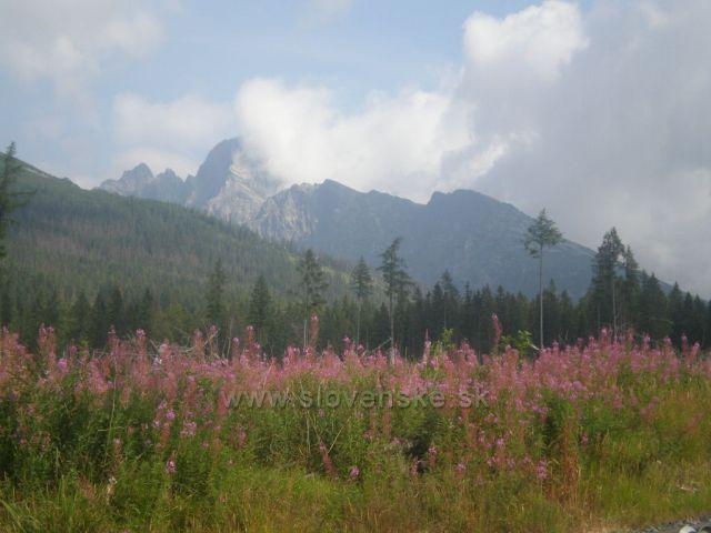 Lomnický štít z cesty na Hreběnok