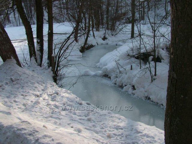 Zamrzlý jezerní potok