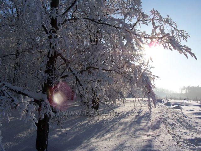 Krajinka v zimním hávu