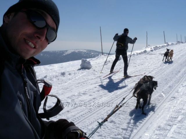 skijoring chata Racek