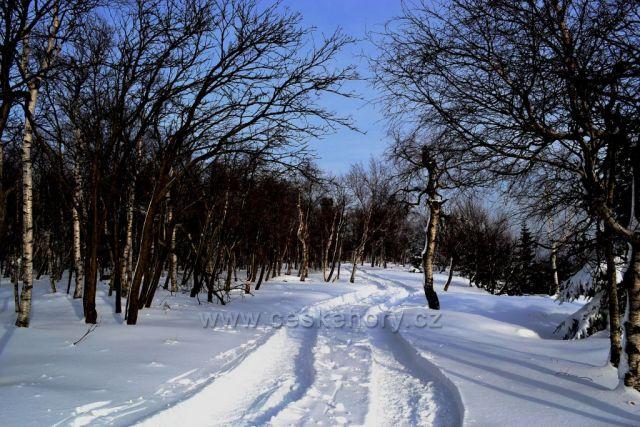 Cesta na Děčínský Sněžník