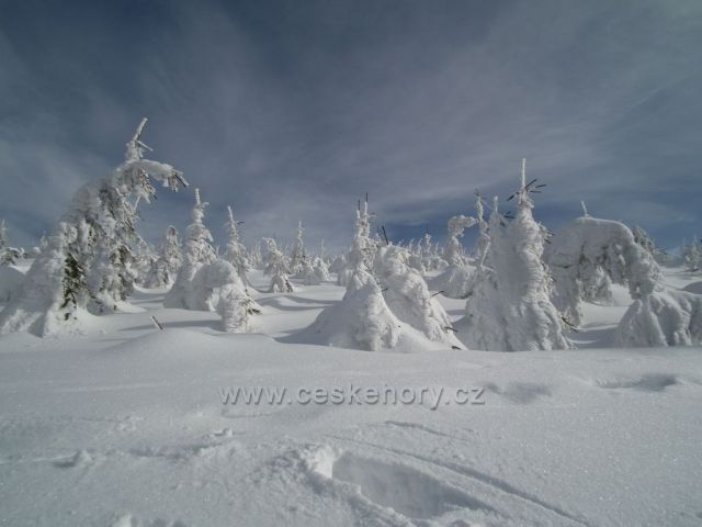 Zimní vyplaz na Lysou