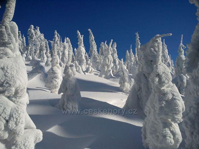 Zima 2012 na Lysé hoře
