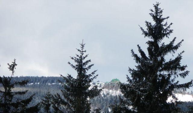 Masarykova chata v Orlických horách