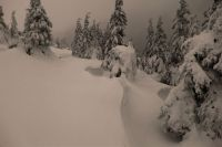 Zimní krajina 1