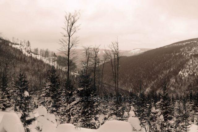 Zimní krajina 4