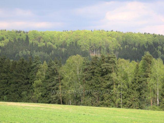 výhled na Jestřebí hory