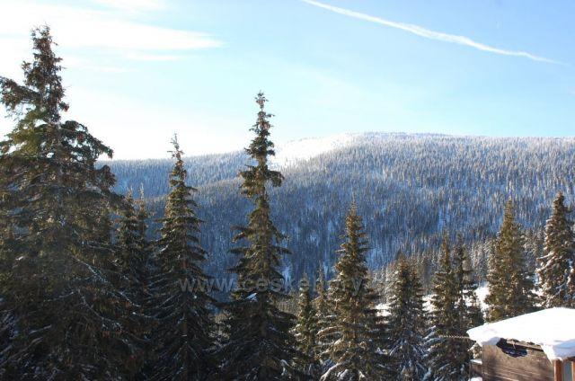 Lyščí hora