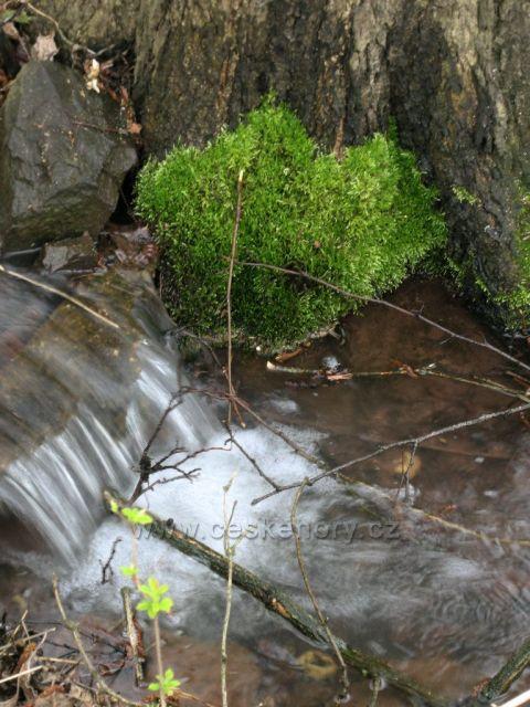 jarní potůček na šumavě