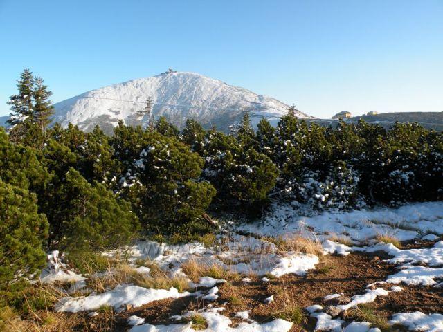 Pocukrovaná Sněžka