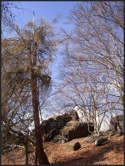 Pod Jedlovým vrchem