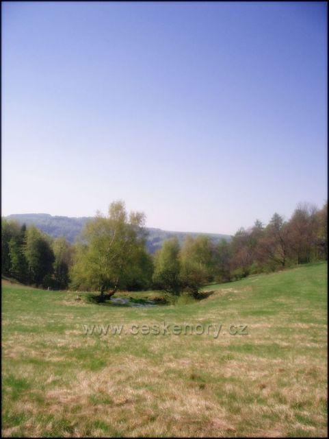 rybníček na Bečovských lukách