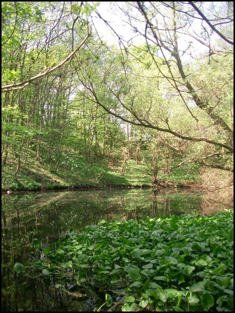 rybníček zaniklá obec Úhošť