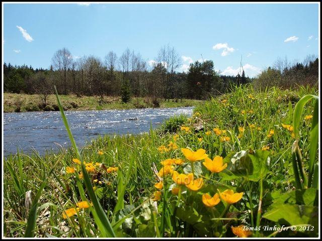 Šumava - řeka Křemelná