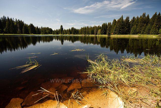 Mýtský rybník