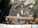 User photo 17634
