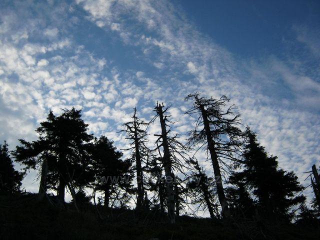 Jeseníky - ráno nad Vřesovkou