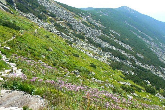 stezka Batizovskou dolinou