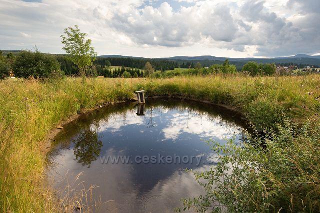 Rybníček ve Filipově Huti