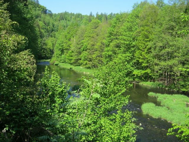 Údolím Moravice z Vítkova na Kružberk