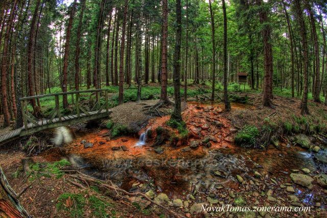 Prameniště Sirného potoku