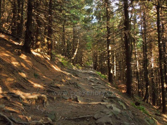 Cesta z Lysé hory po modré