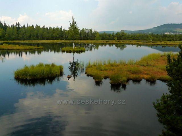 Jezero v Chalupské slati - tudy vedla nebezpečná trasa Krále Šumavy
