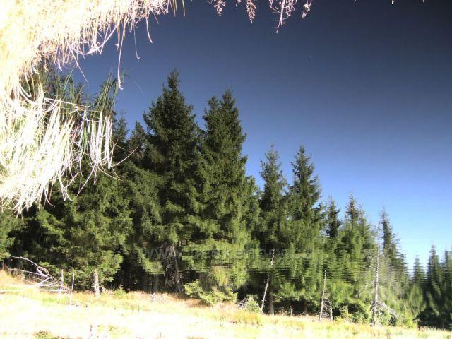 Božídarské rašeliniště