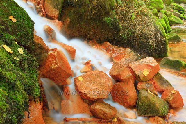 Železitý přítok Suché Kamenice