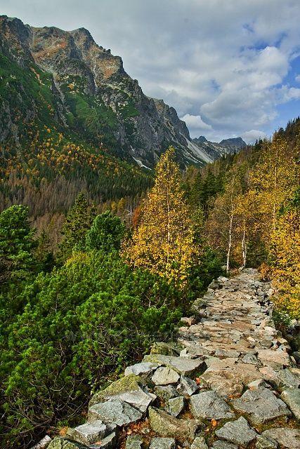 cestou od Zamkovského chaty