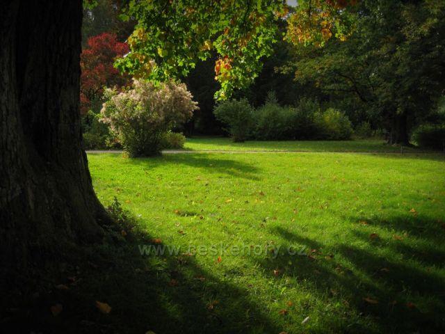 V parku ...