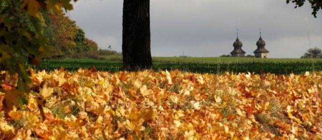 Podzimní Šonov