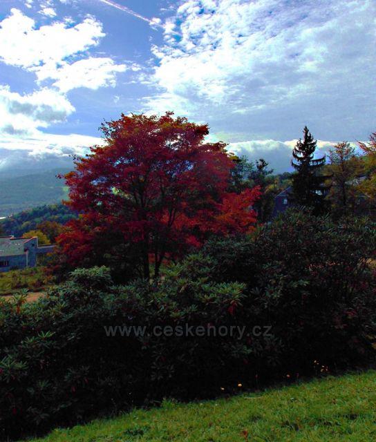 Jeseníky-lázně