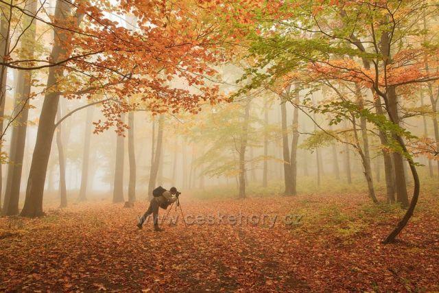 Fotografická podzimní náladovka