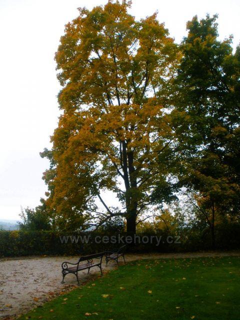 podzim na českobudějovicku