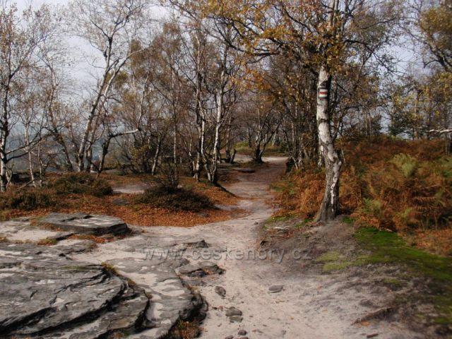 V Tiských skalách
