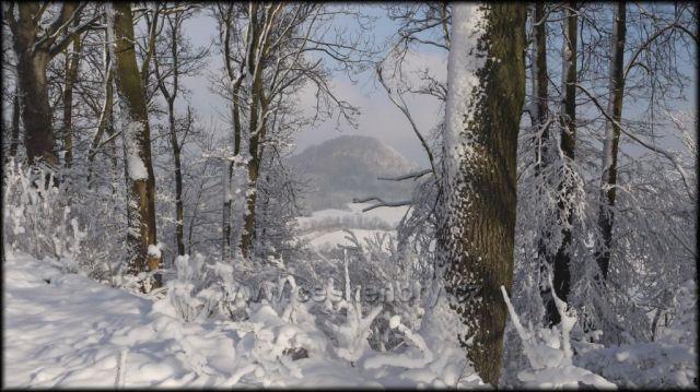 Pohled ze Skalického vrchu na Chotovický vrch