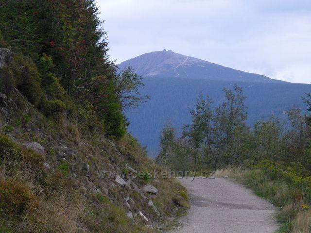 Cesta od Václaváku-rozcestí pod Černou horou