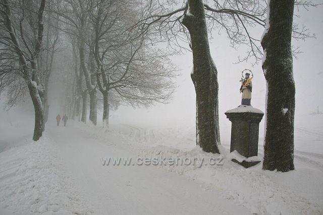Zimni alej v Příchovicích.