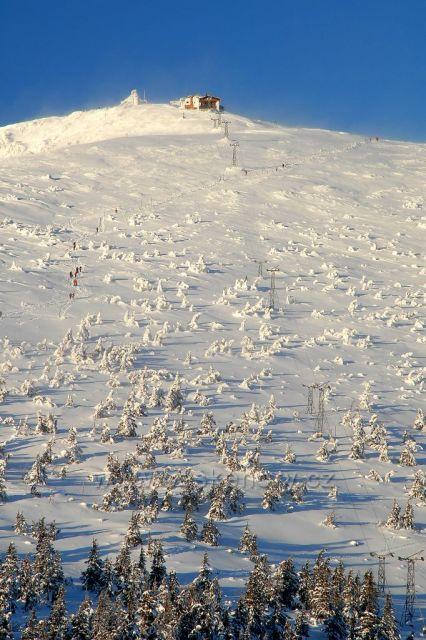 cesta na Sněžku