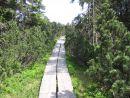 naučná stezka Černohorské rašeliniště Krkonoše