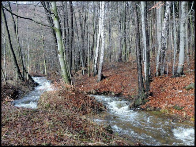 Kundratický potok nad Vysokou Pecí