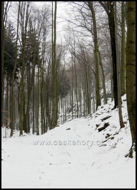 Skaliska v oboře Červený Hrádek nad Drmalskou myslivnou.Cesta u Kamenice.