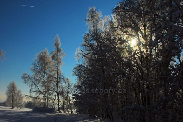 Zelená hora v zimě, Kraslice
