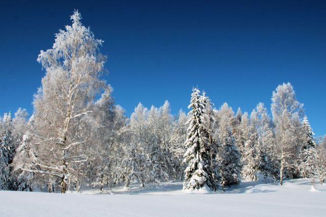Zimní pohádka, Zelená hora, Kraslice