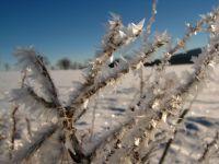 zima na Rejvízu